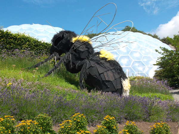 St Ives Cornwall - Days Out - Eden Project
