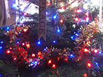 Christmas Tree Festival - St Ives Cornwall - December 2015